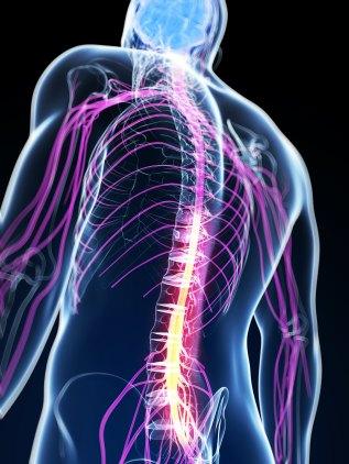Spinal-Cord-Stimulation